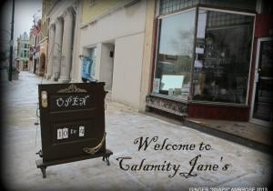 Calamity Janes, LLC