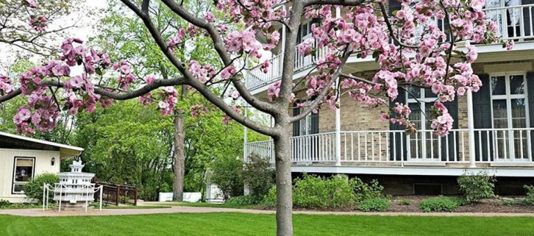 Enjoy a guided tour of the Octagon House Museum in Watertown. The museum is open May-October