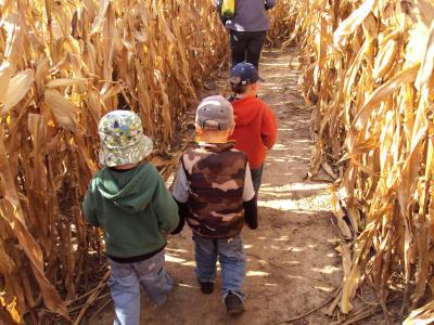 Busy Barns Farm Adventures