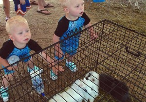 Kids with Rabbits