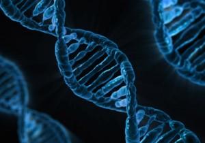 "FACTalks: ""DNA Testing for Ancestry and Health Information"""