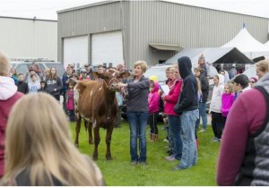 NASCO 33rd Annual Showing and Grooming Demonstrations