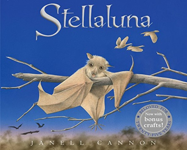 Little Sprouts Story & Strolls: Stellaluna the Bat