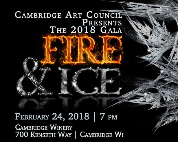 Cambridge Arts Council Gala
