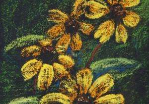 Floral Interpretations in Soft Pastel
