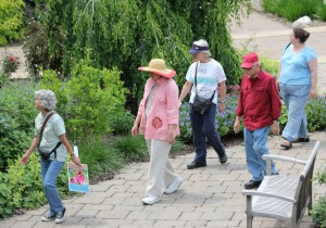 Guided Garden Strolls