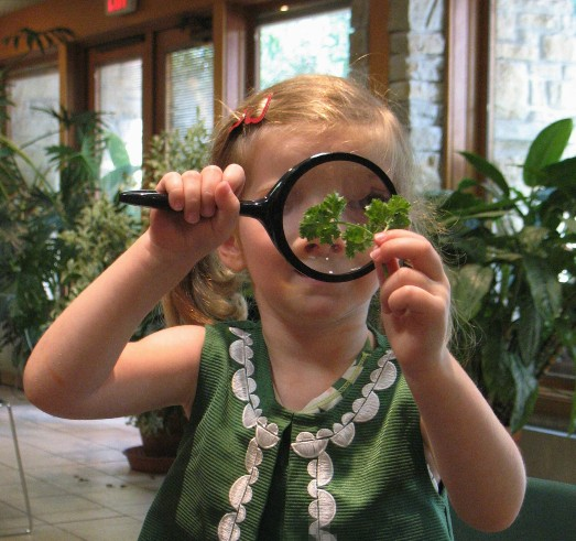 child with magnify glass looking at a leaf