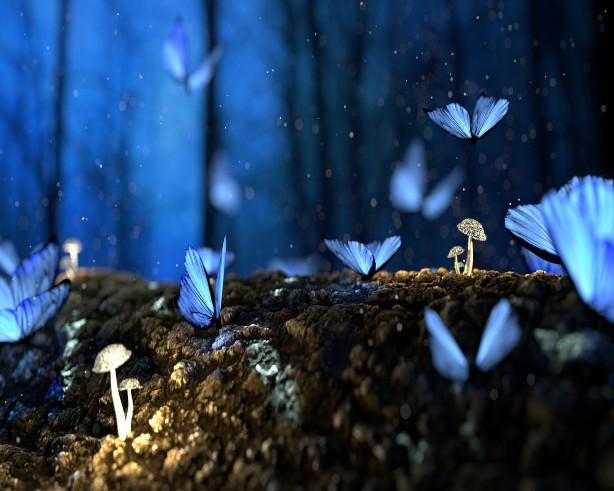 Make a Felted Fantasy Garden
