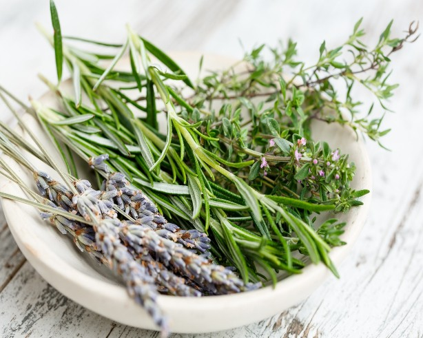 From the Garden: Herbal Soap Making Workshop
