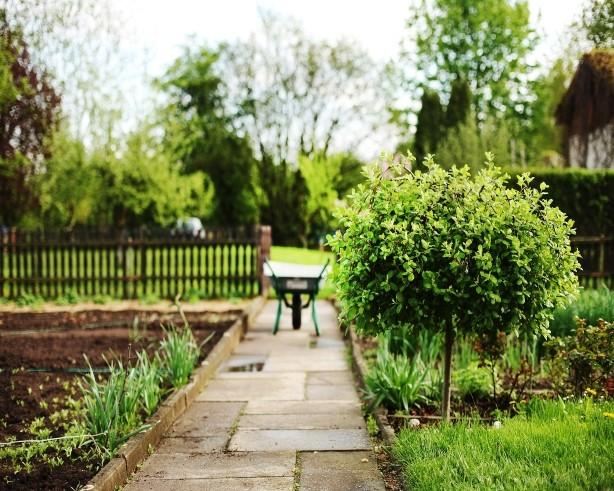 Designing Attractive Native Gardens
