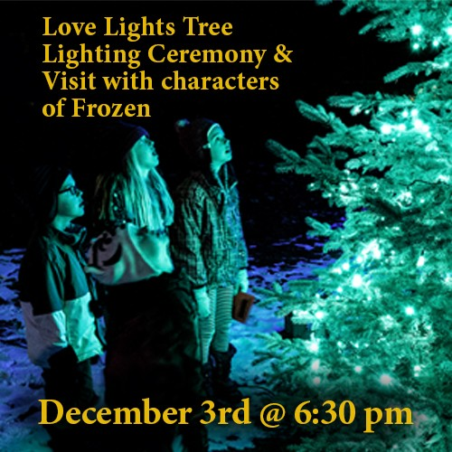 2019 Love Lights Tree Lighting Ceremony & Visit with characters from Frozen!